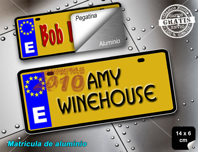 MINI MATRICULA ALUMINIO DE MUSICA AMY WINEHOUSE