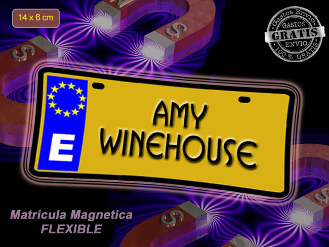 MINI MATRICULA MAGNETICA IMANTADA MUSICA AMY WINEHOUSE